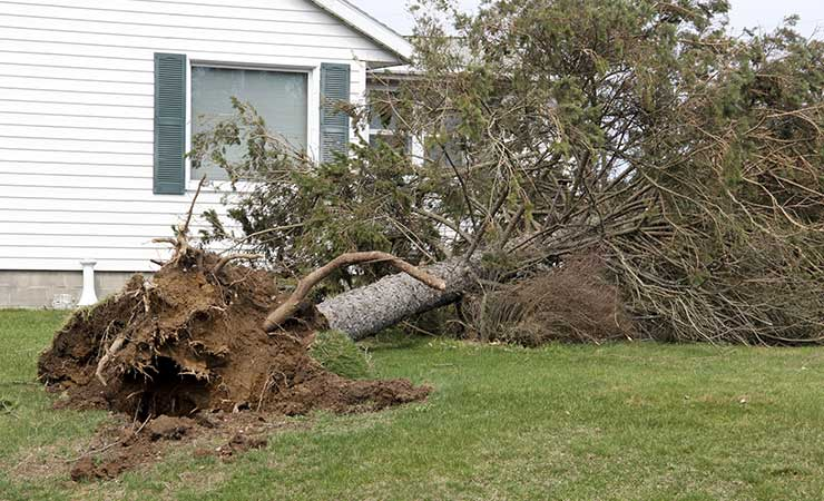 Storm Damage Repair Omaha NE