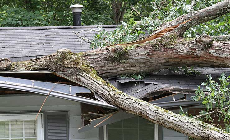 Storm Damage Assessment Omaha NE